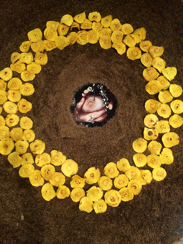 Para mamár de ella, hay que amarla a ella  [detail], 2015. Photography, corn masa, hominy, potting soil & nylon.