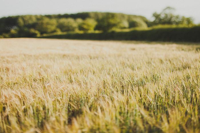 uk-wedding-phootgrapher-79.jpg