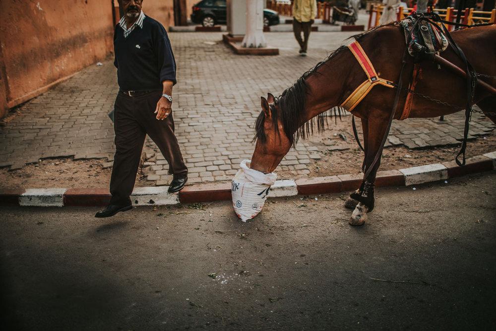 morocco weddong