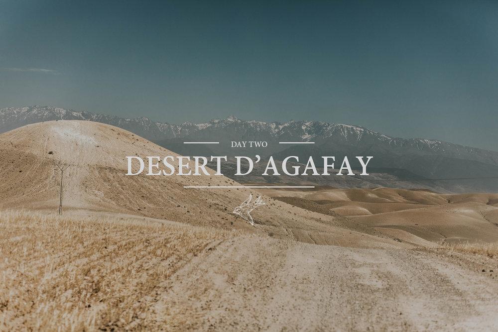 Day-Two-Desert.jpg
