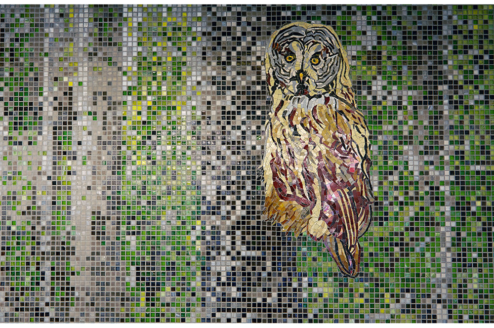 Mosaik_familjebostäder_skog_24.jpg