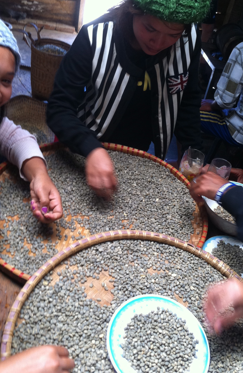 Sorting peaberries by hand.