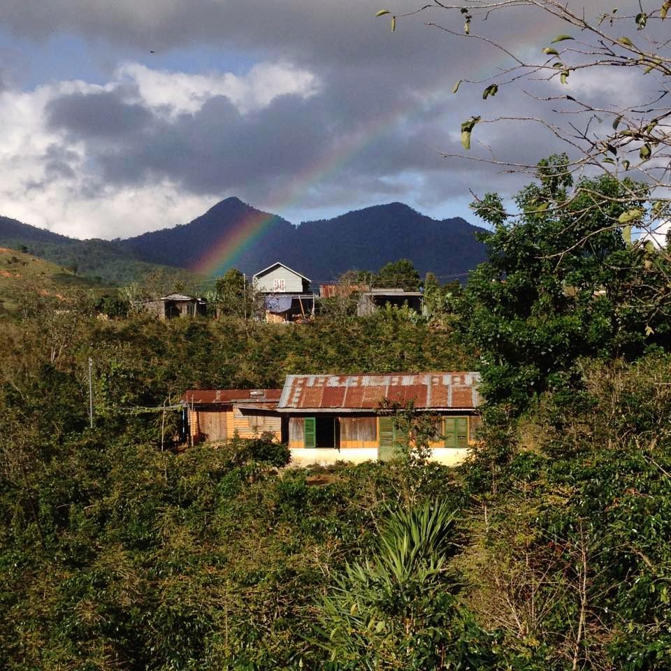 """""""Không chỉ cà phê, mà đường vào làng K'Ho với những ngôi nhà có cửa nhiều màu sắc và những đôi mắt của em bé người K'Ho cũng cuốn hút chúng tôi. Ảnh: K'Ho Coffee."""""""