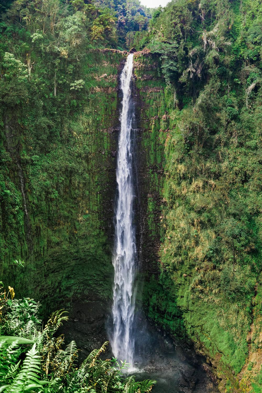Akaka Falls, Big Island, Hawaii 2016