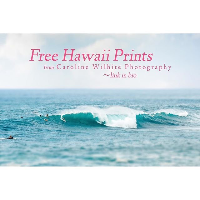 Free full resolution Hawaii downloadable images. Go to my website for the link!