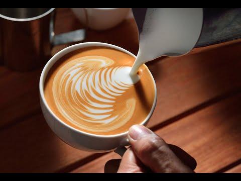 Lattes & Cappucinos