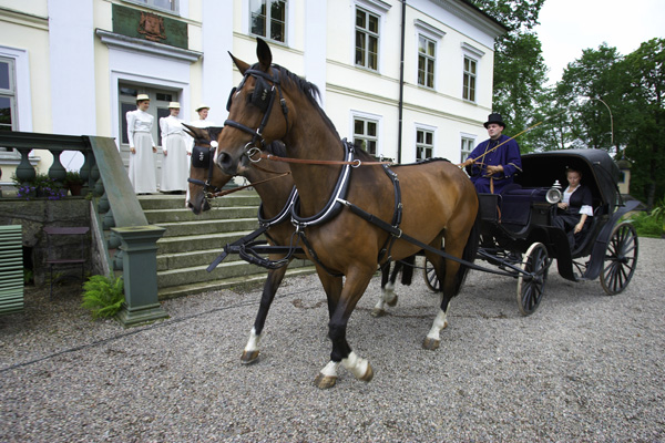 Huseby horse.jpg