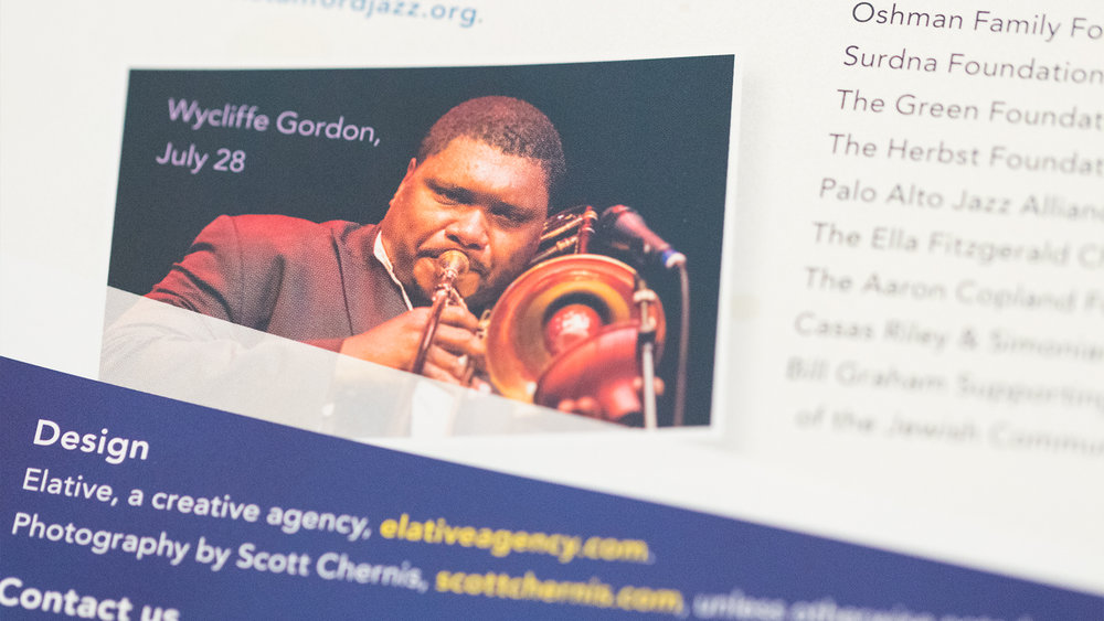 Print – Festival Mailer – Panels Side (Credits Close-Up)