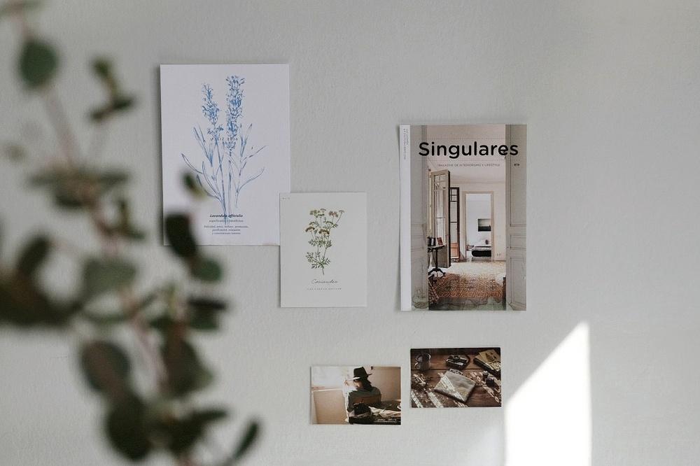 Singulares Magazine -
