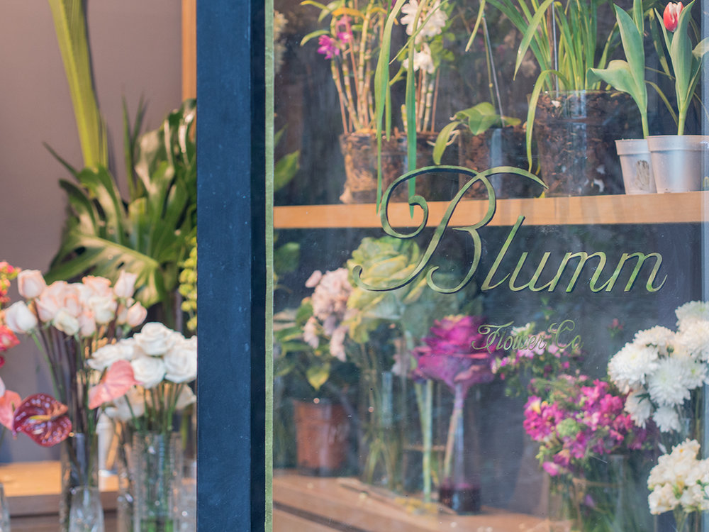 Blumm-01.jpg