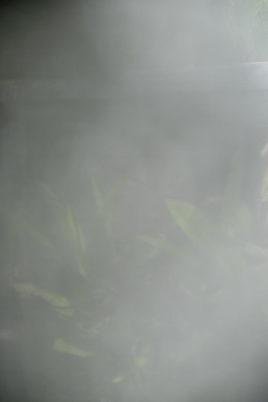TR18-0124.jpg