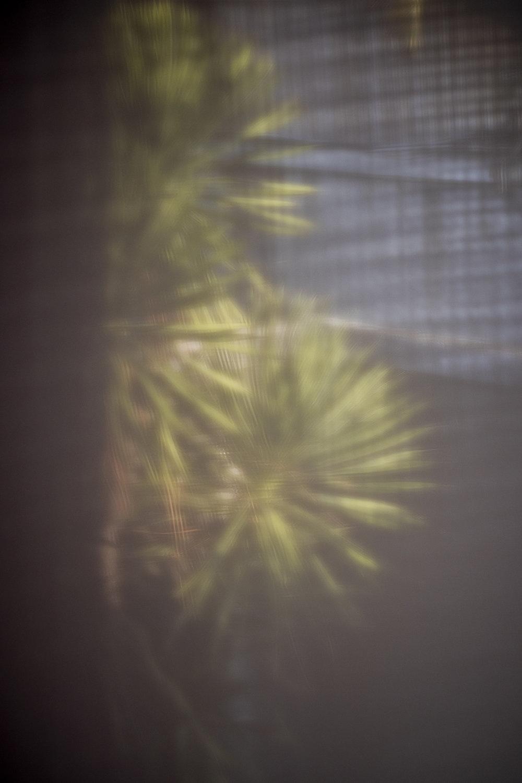 TR18new-0107.jpg