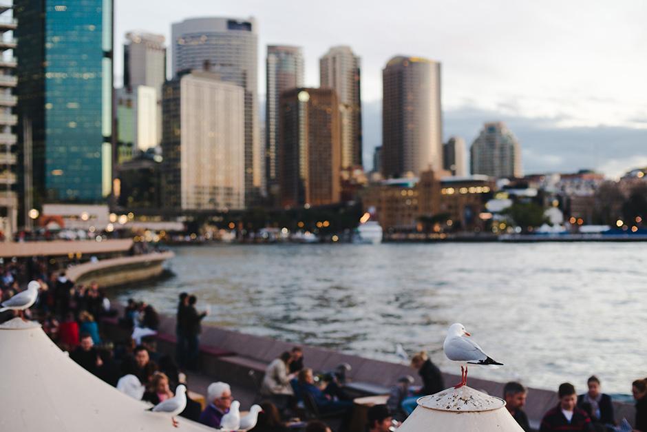 2015.05.01 KT Blog - Canberra Sydney - 37.jpg