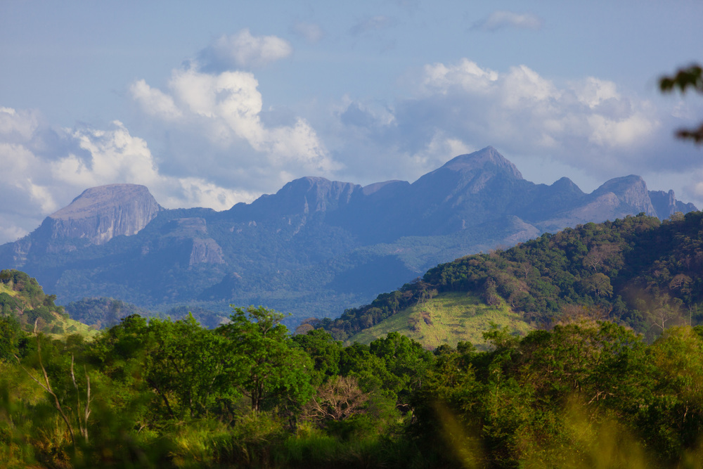 The central highlands of Sri Lanka.