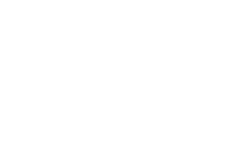 Patrick D. Simmons - Commercial Photographer