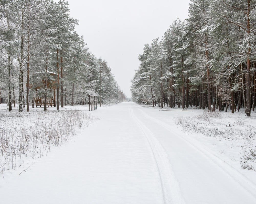 The Boulevard, Stalag Luft III, Zagan, Poland | January 2015