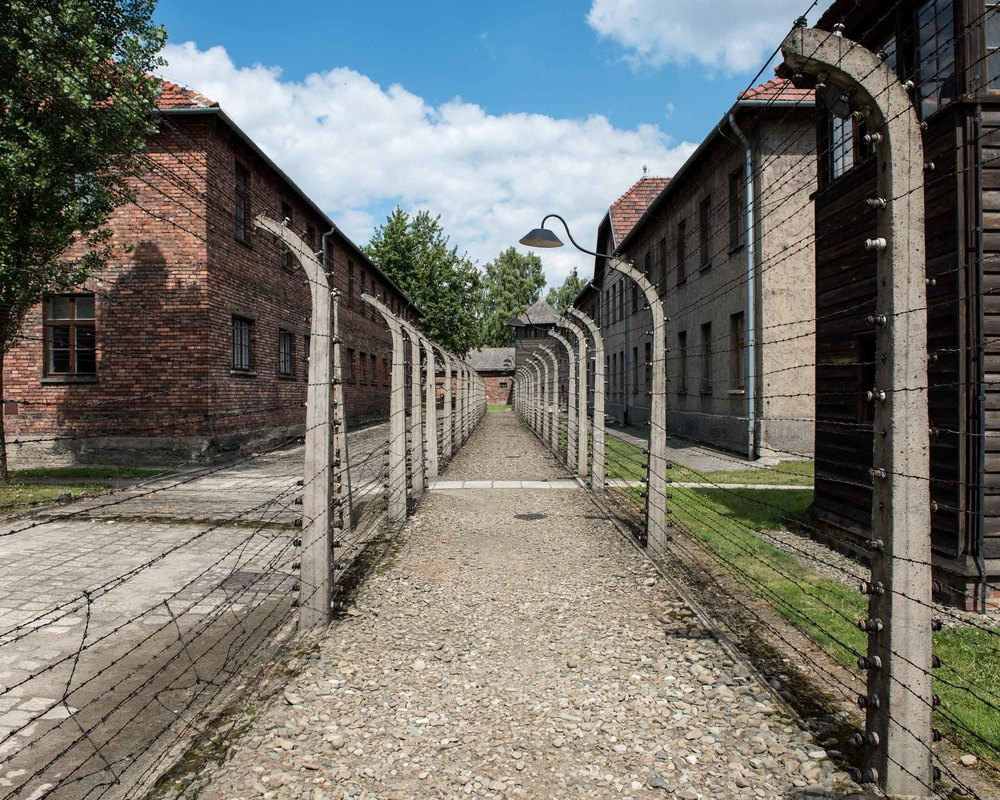 Camp Fence