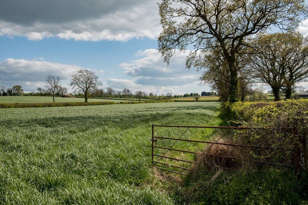 High Cross, Venonae, Leicestershire - April 2017