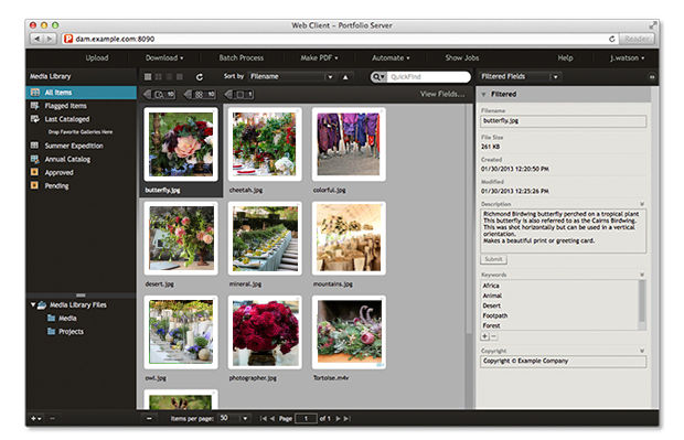 Portfolio-extensis-sample.jpg