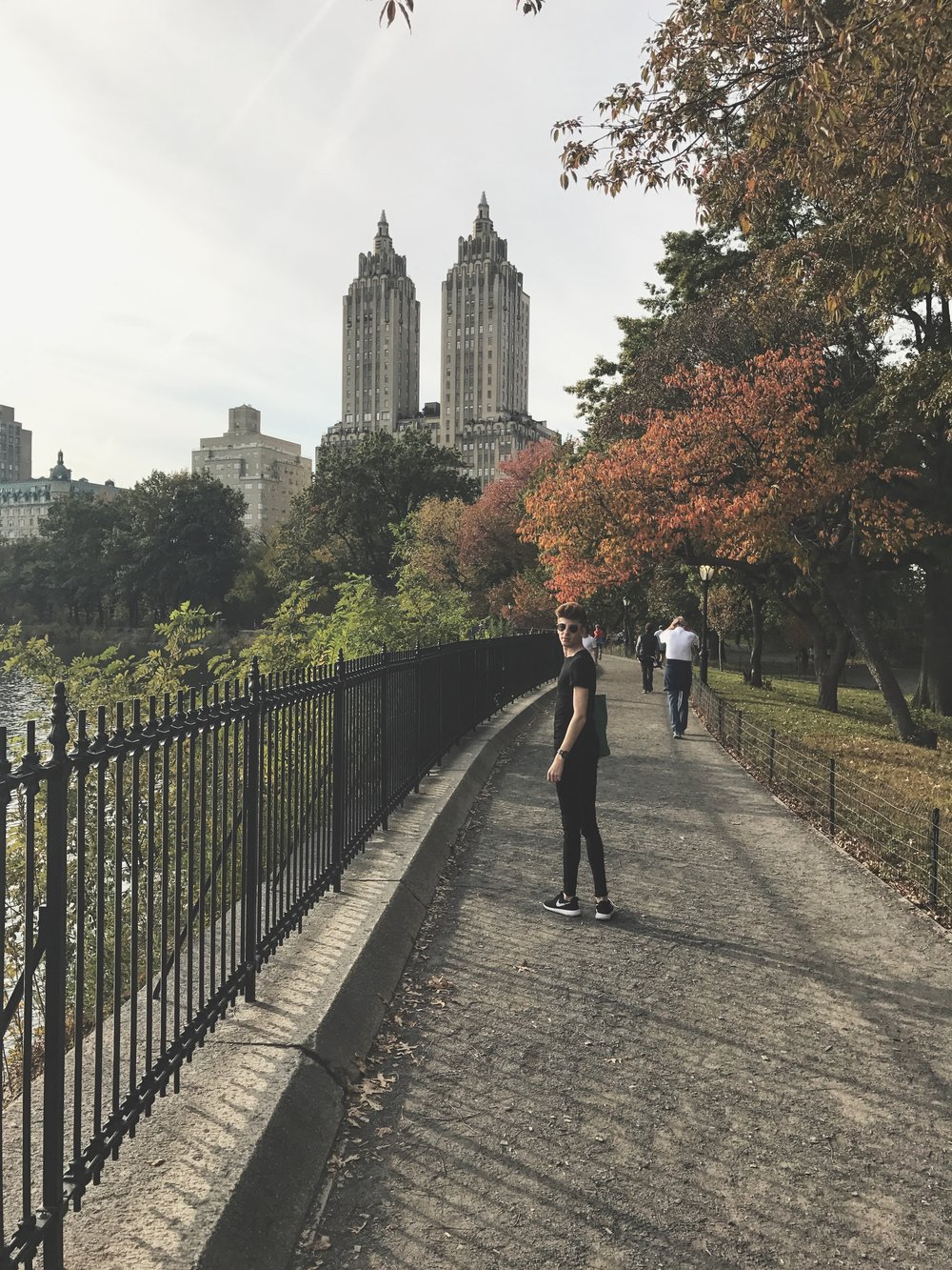 Let's take a walk in the park, Central Park.