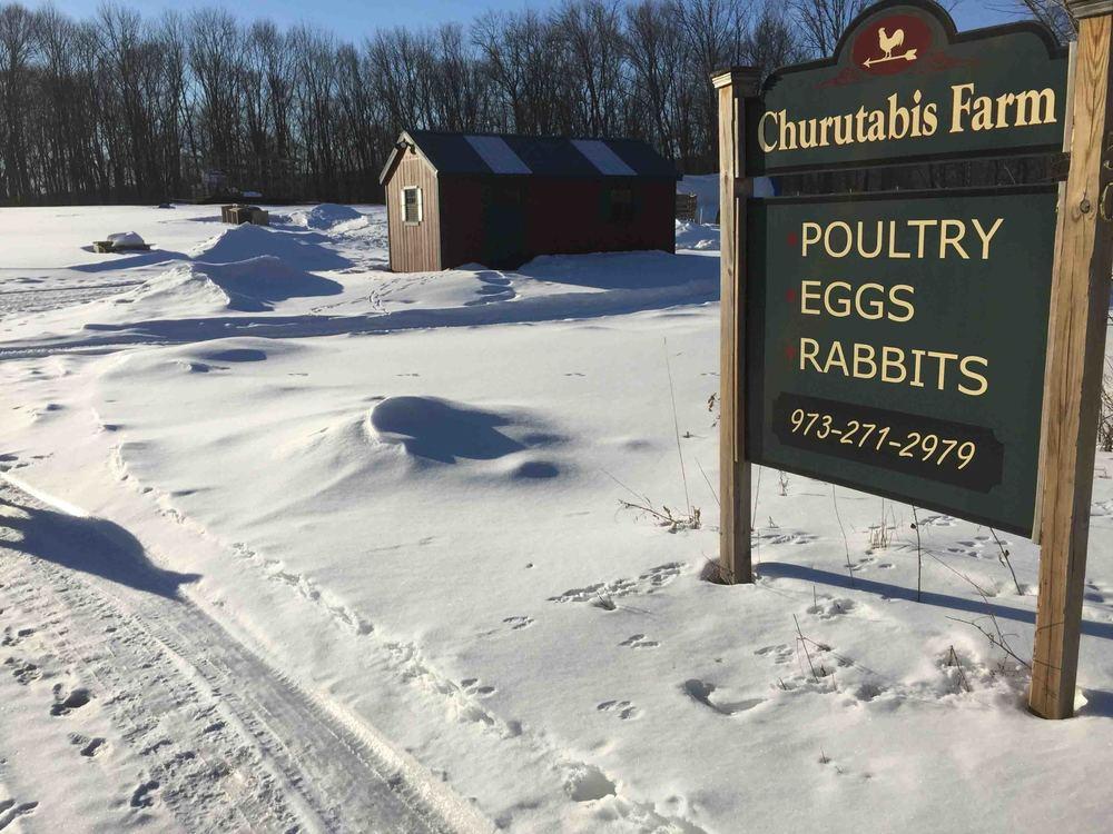 Churutabis Farm