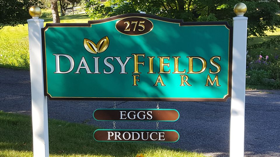 Daisy Fields Farm