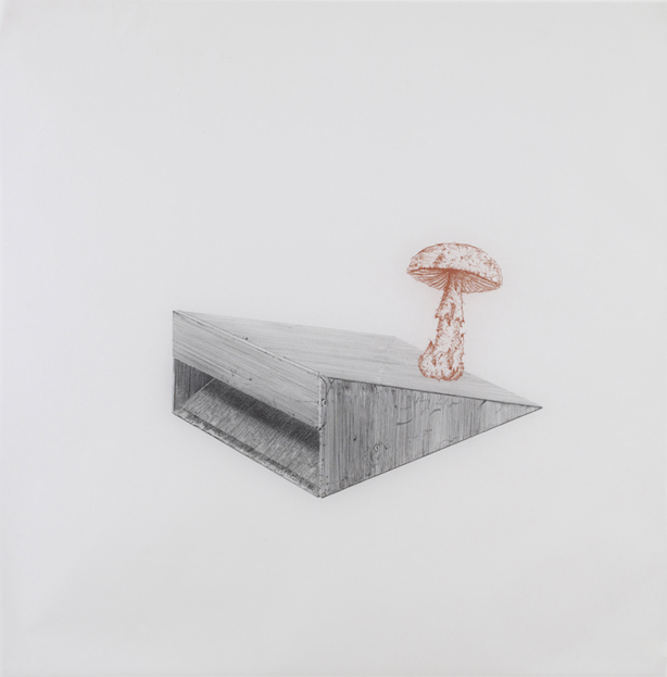 Bruce Nauman , 2010, pencil and sanguine on tracing paper, 41 x 41 inches/ 104 x 104 cm