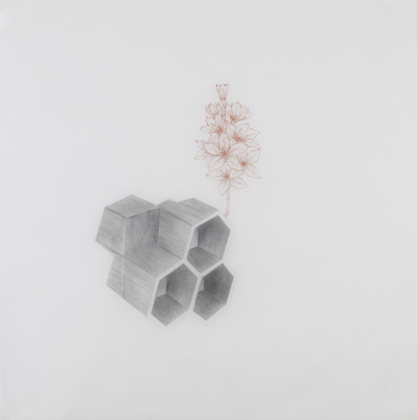 Tony Smith , 2010, pencil and sanguine on tracing paper, 41 x 41 inches/ 104 x 104 cm
