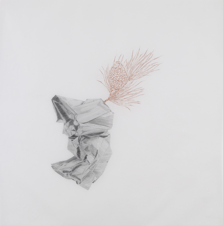 Richard Chamberlain , 2010, pencil and sanguine on tracing paper, 41 x 41 inches/ 104 x 104 cm