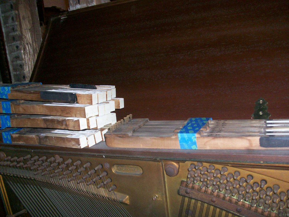 milton player piano keys