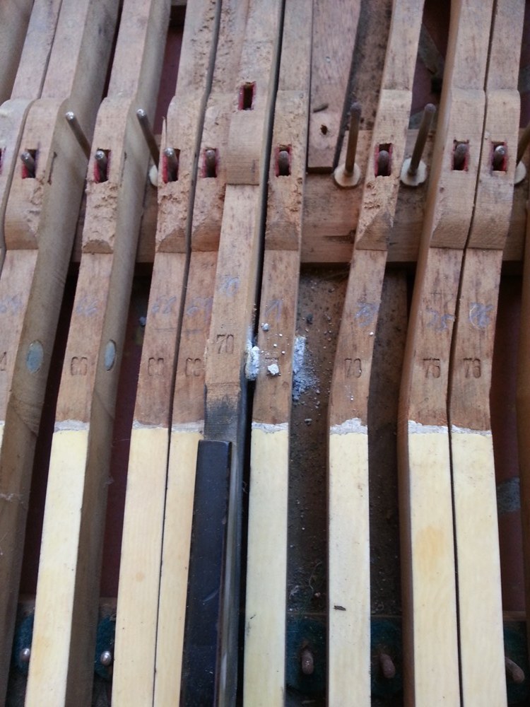 These expanded key leads are causing the keys to bind against each other.  This issue was caused by rodents living in the piano, as is evident by the teeth marks on the keys.