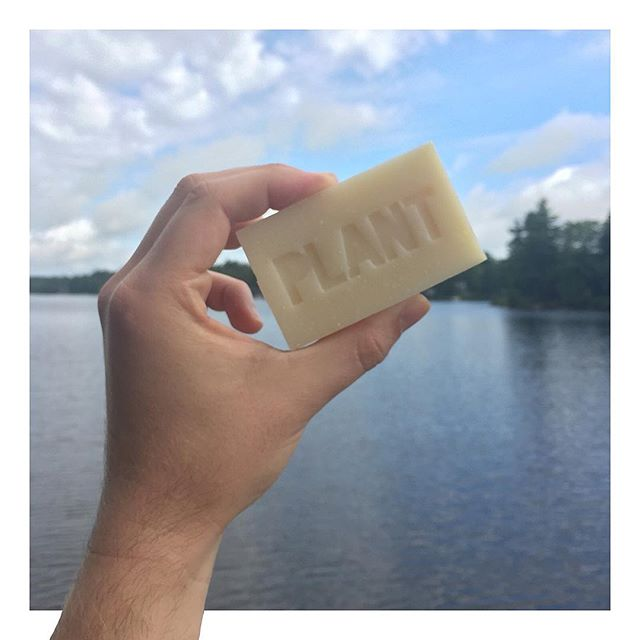 Look. At. This. Soap. 🛀🏻. It smells sooooo good! . . #lemongrass #rosemary #titsup #titsupblog #igers #plantapothecary #beautyblog #blog #fun #bbloggers #beautiful #instadaily #instamood #instagood #photooftheday #picoftheday #bbloggersca #greenbeauty #natural #organic #skincare #allnatural #soap