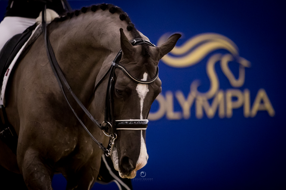 Olympia London008.jpg
