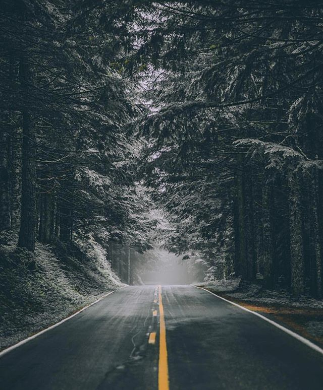 Dark & mysterious roads, just how we like them // #TheAdventureProject  Photo by: @ashleyinwanderland