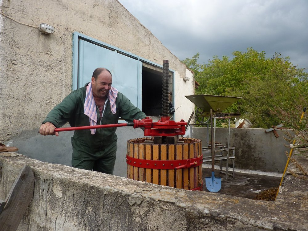 My Cousin, O Yiannis, Grinding Grapes for the Family Wine