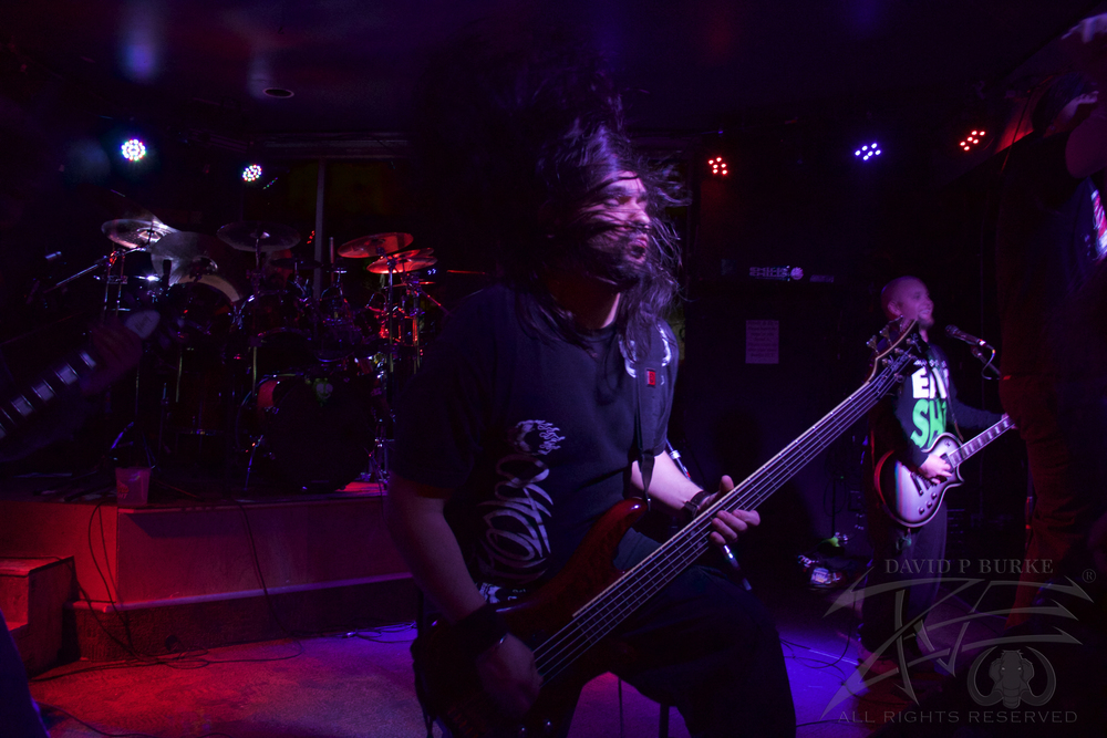 Fist Fight bassist Adrian Montoya