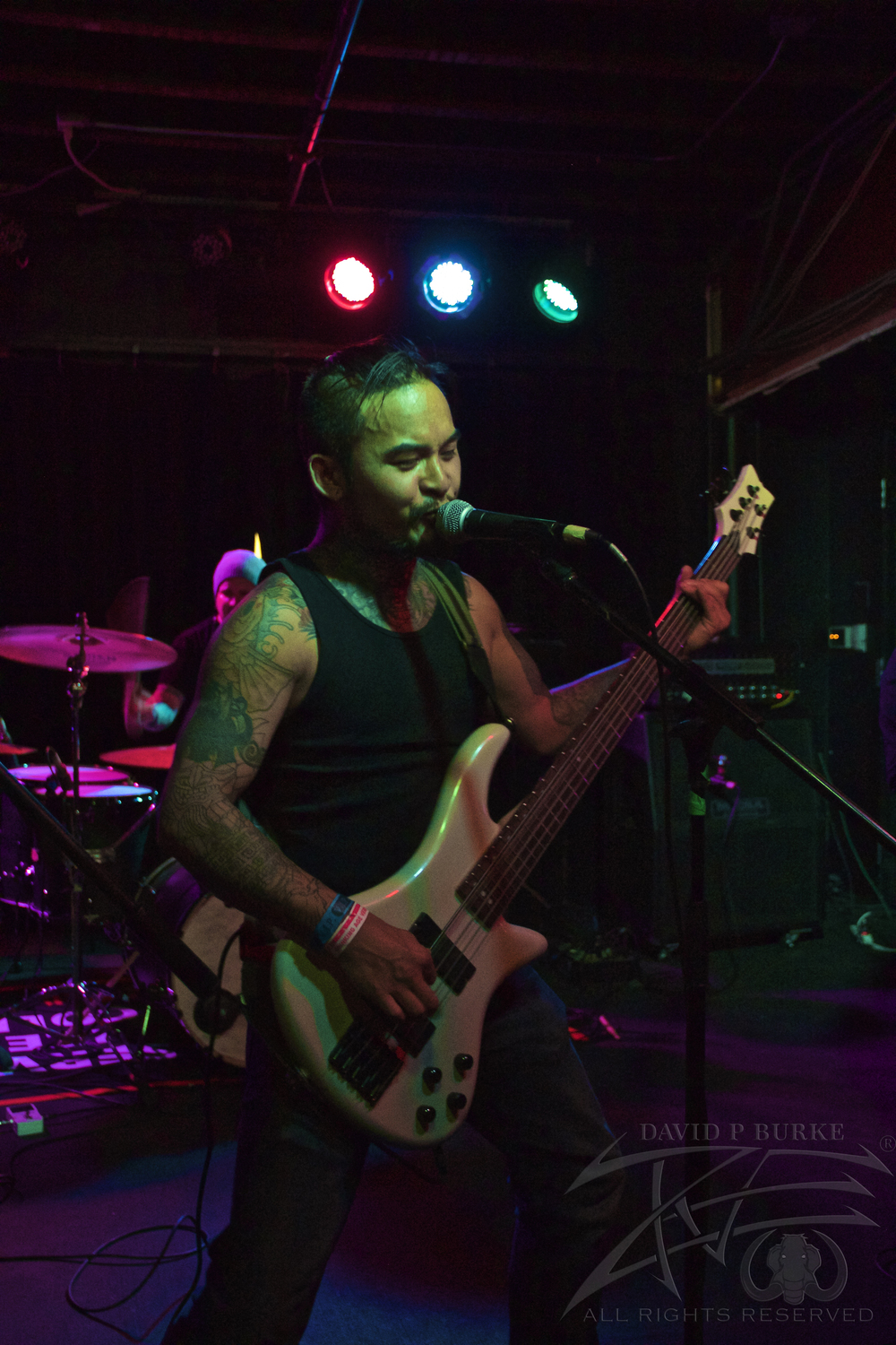 Son Survivor's bassist Rob    photo: David Burke