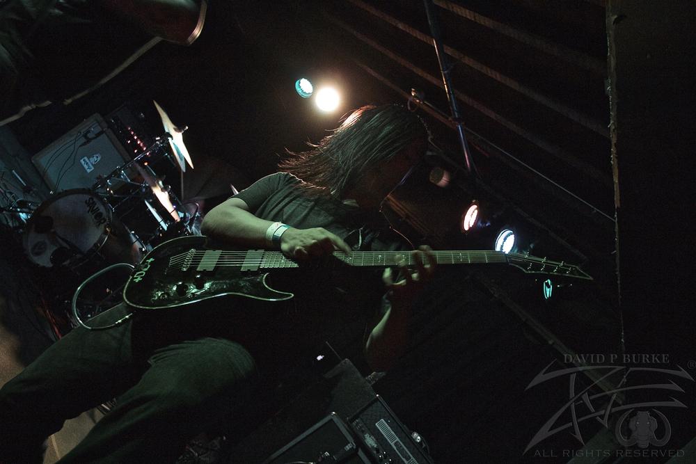 Son Survivor's guitarist Yosh  photo: David Burke