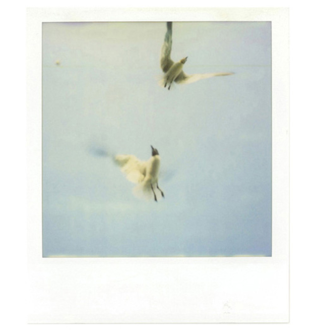polaroid010.jpeg