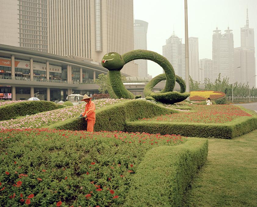 shanghai_snake.jpg