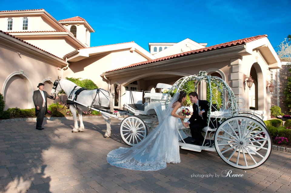 Dream Horse Carriage Company   Home of the Cinderella Carriages and Famous White Horses  Cinderella Carriages, Traditional Vis a Vis Carriages, Vintage Carriages, Coaches, Wagons...    www.happytalespets.com