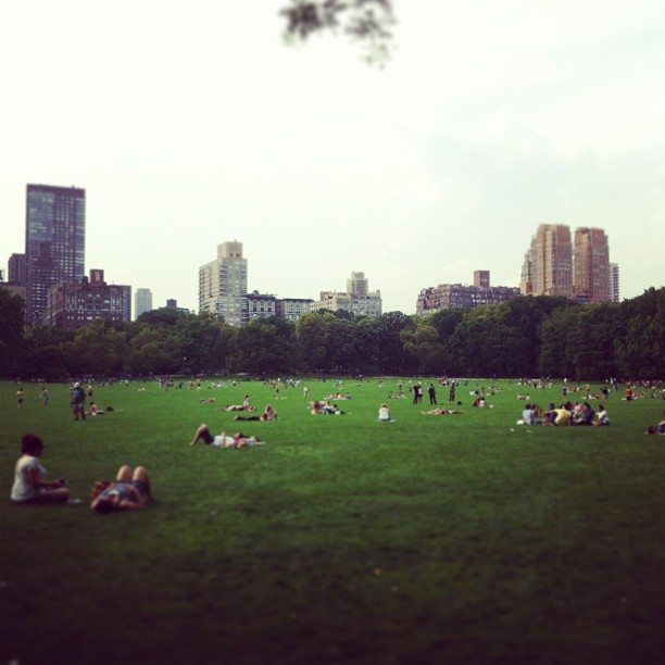 Summer in NYC (at Central Park - Sheep Meadow)