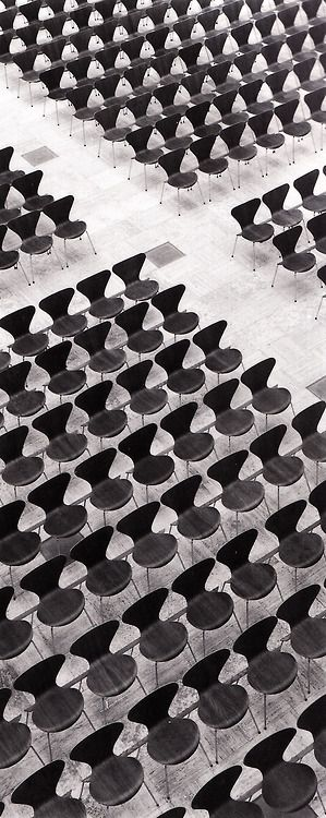 Series 7 Chairs by Arne Jacobsen for @Daniel Vasey of Fritz Hansen  #blackandwhite