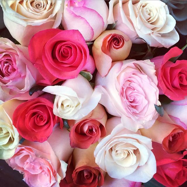 #NYC #roses (at Manhattan New York, N Y)