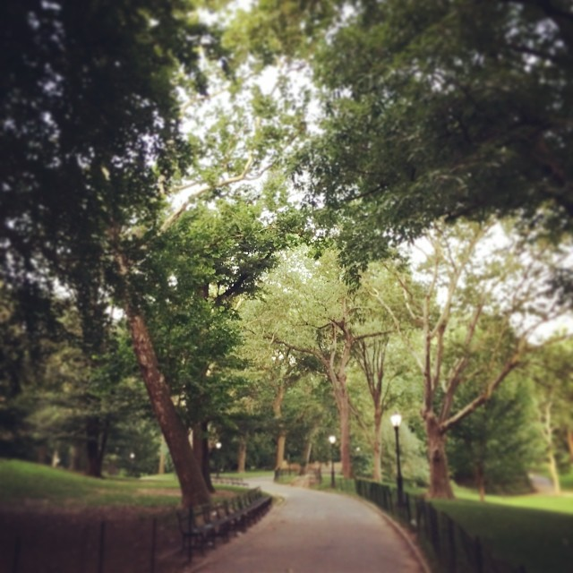 Even in this crazy city, you can still find #peace in #nature… Morning #run #nyc (at Central Park East)