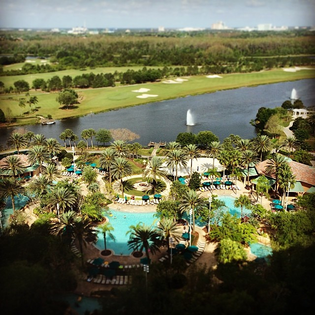 Enjoying the view and excited to visit a hotel designed by @SRSSA! (at The Ritz-Carlton Orlando, Grande Lakes)