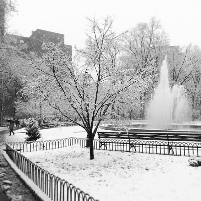 #nyc #snow  (at Stuyvesant Oval)