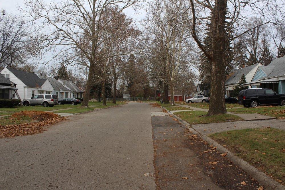street view1.jpeg