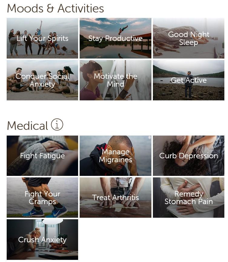 LeflyMoodsActivitiesMedical.jpg