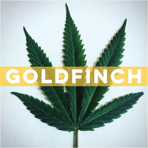 GoldfinchWeed.jpg